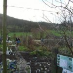 Allotment without Yurt