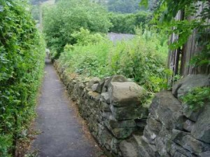 Dry stone Wall 3